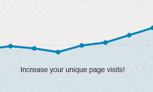 Everfan Google Analytics Unique Site Visits